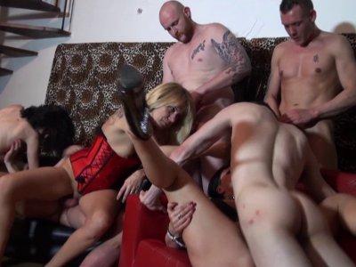 Trois magnifiques nympho se retrouvent dans la maison du sexe pour une orgie déb